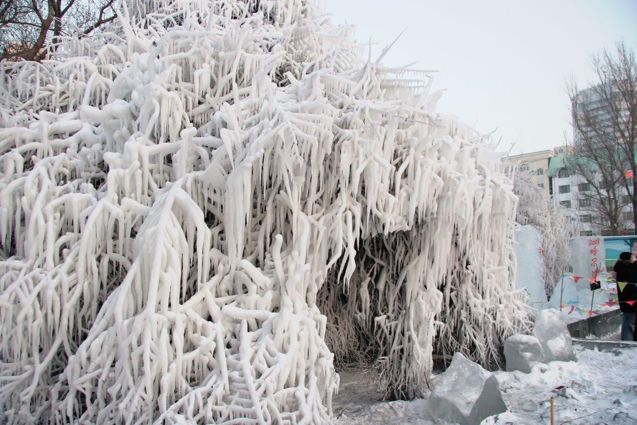 Frozen tree in downtown Harbin, Elijah Wilcott, 2008